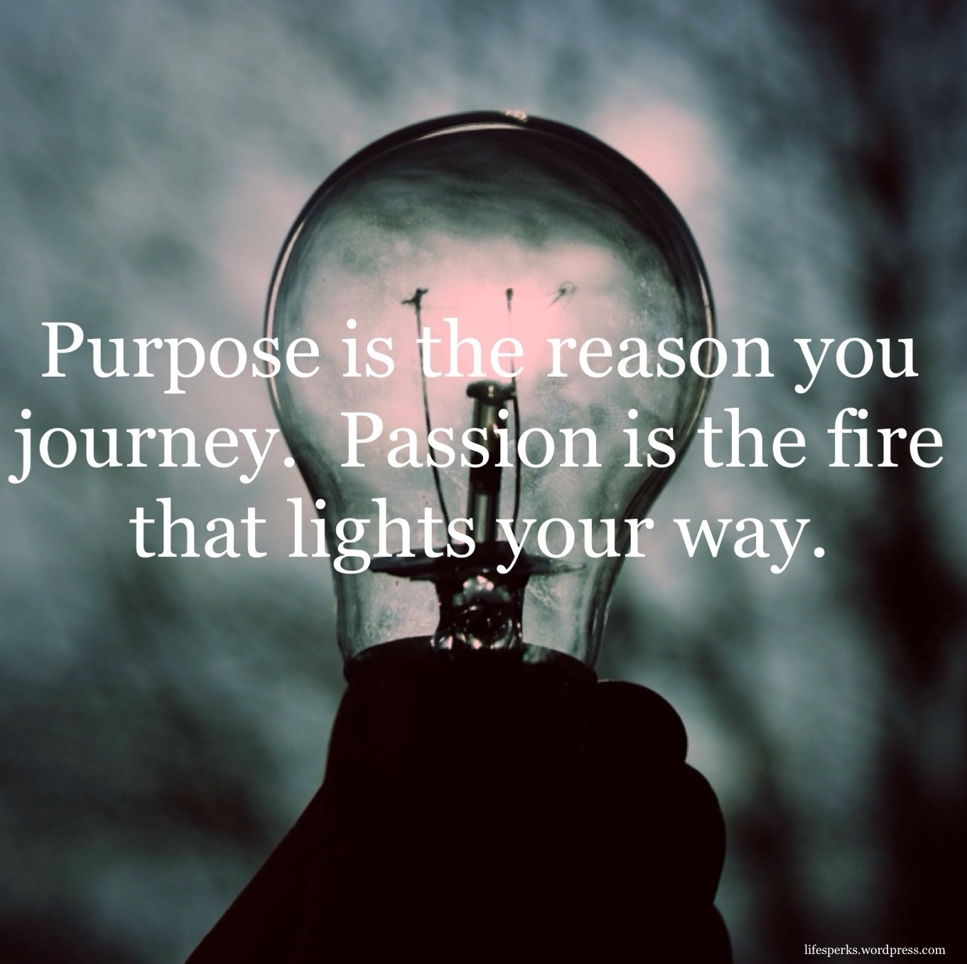 Quotes Journey 63 Best Passion Quotes And Sayings Of All Time