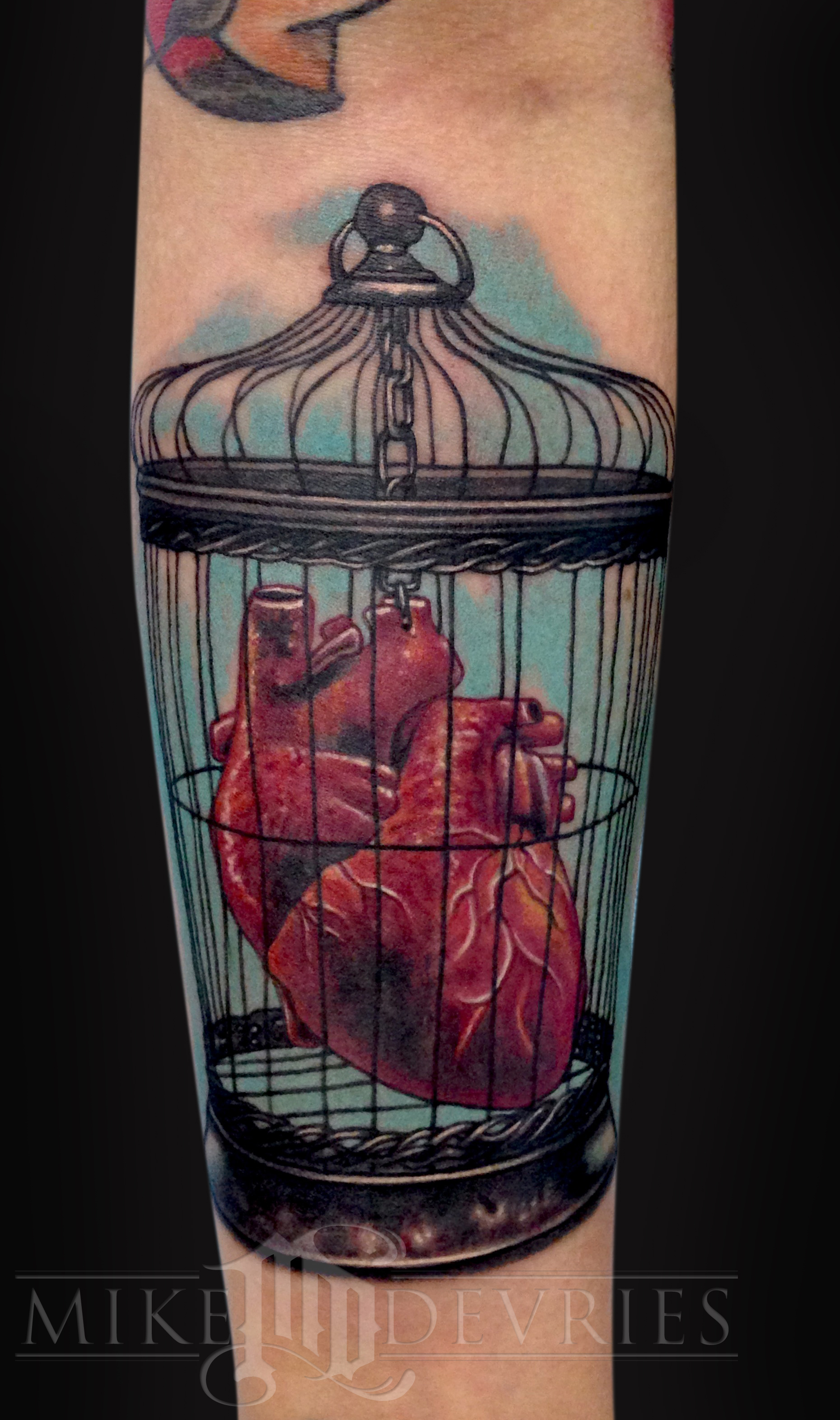 Real Heart In Birdcage Tattoo On Forearm By Mike Devries