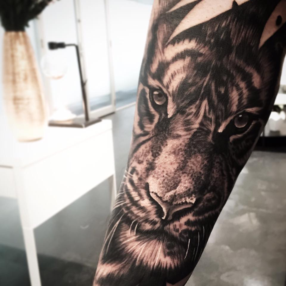 39308fd7dde4f Realistic Grey Ink Tiger Tattoo On Forearm