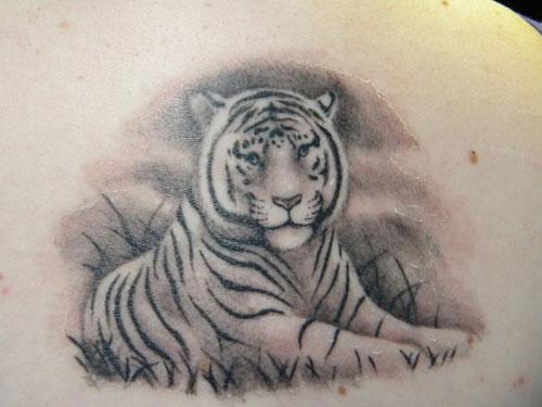 Simple White Tiger Tattoo Idea