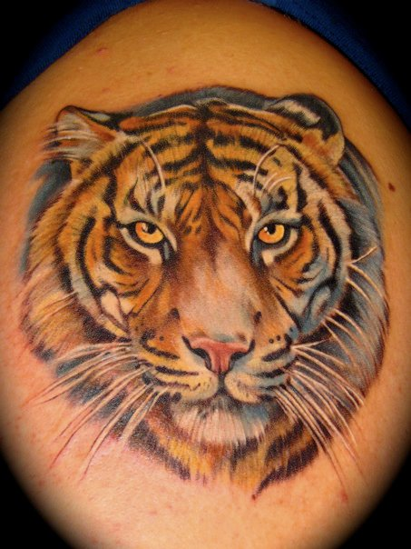 59 tiger face tattoos designs ideas ForTiger Tattoo Face