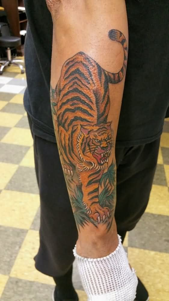 Tattoos For Men Forearm: 62+ Best Tiger Tattoos On Forearm