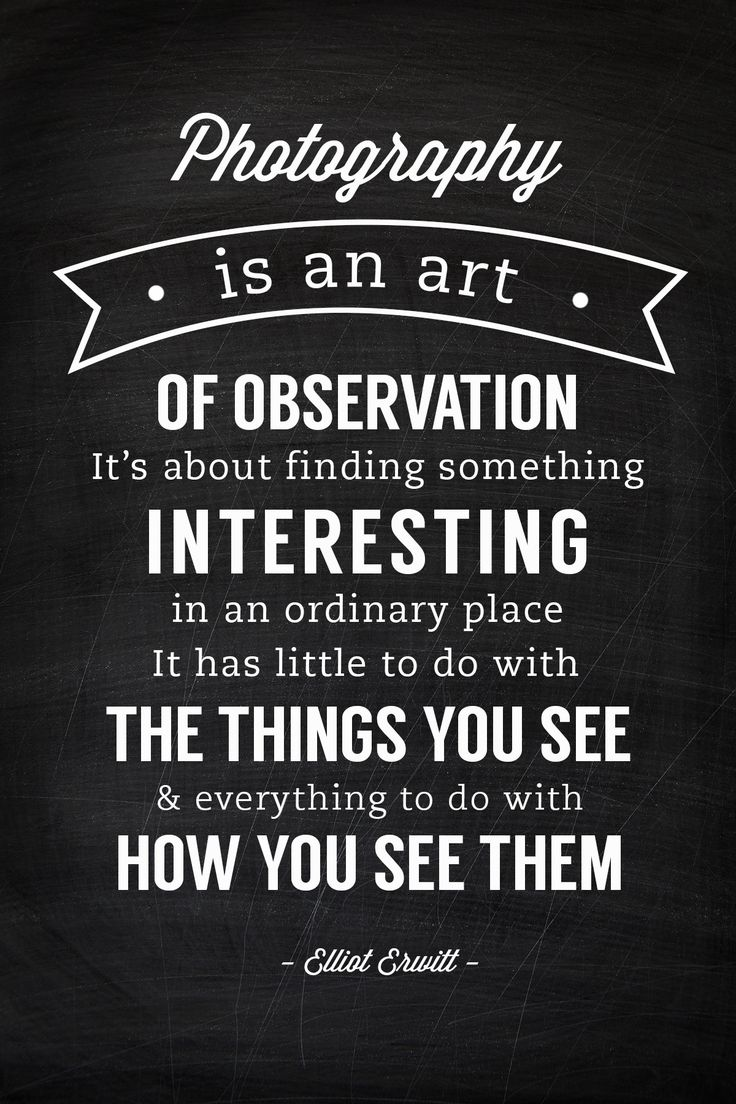 quotes elliott erwitt sayings something finding observation interesting ordinary everything its