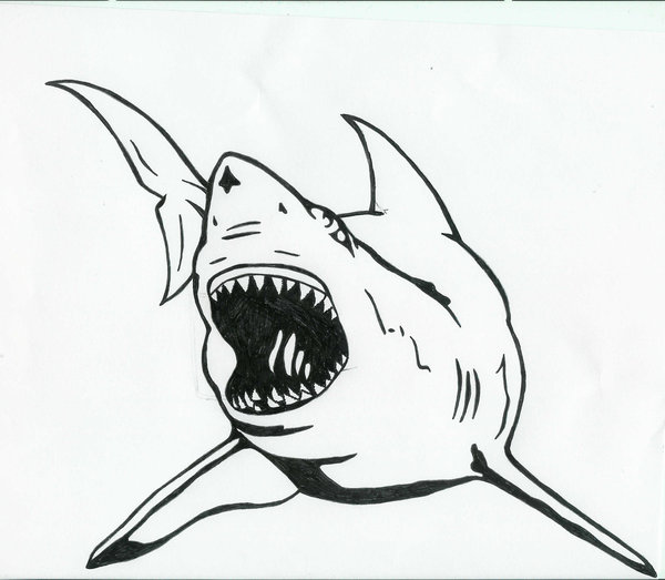 Wonderful Black Outline Shark Tattoo Stencil