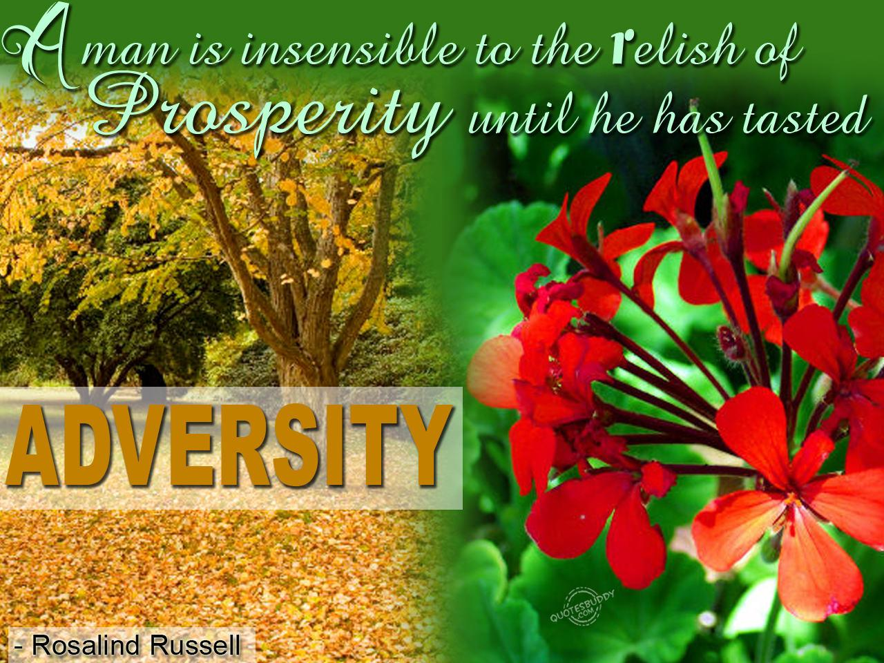 A man is insensible to the relish of prosperity until he has tasted adversity. Rosalind Russell
