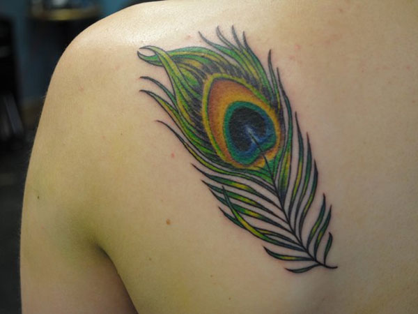 36 peacock feather tattoos designs and pictures for Peacock back tattoo