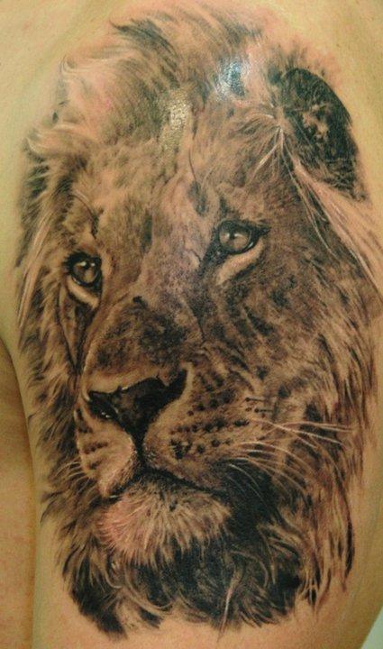 black ink lion tattoo on left back shoulder. Black Bedroom Furniture Sets. Home Design Ideas