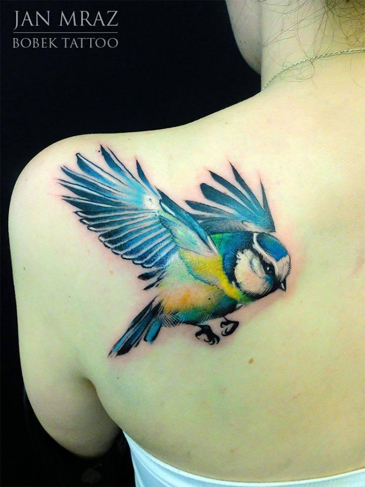 Colorful Flying Bird Tattoo On Girl Left Back Shoulder