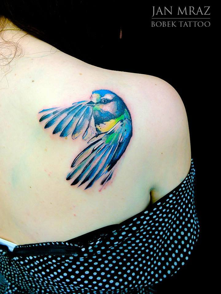 Colorful Flying Bird Tattoo On Girl Right Back Shoulder