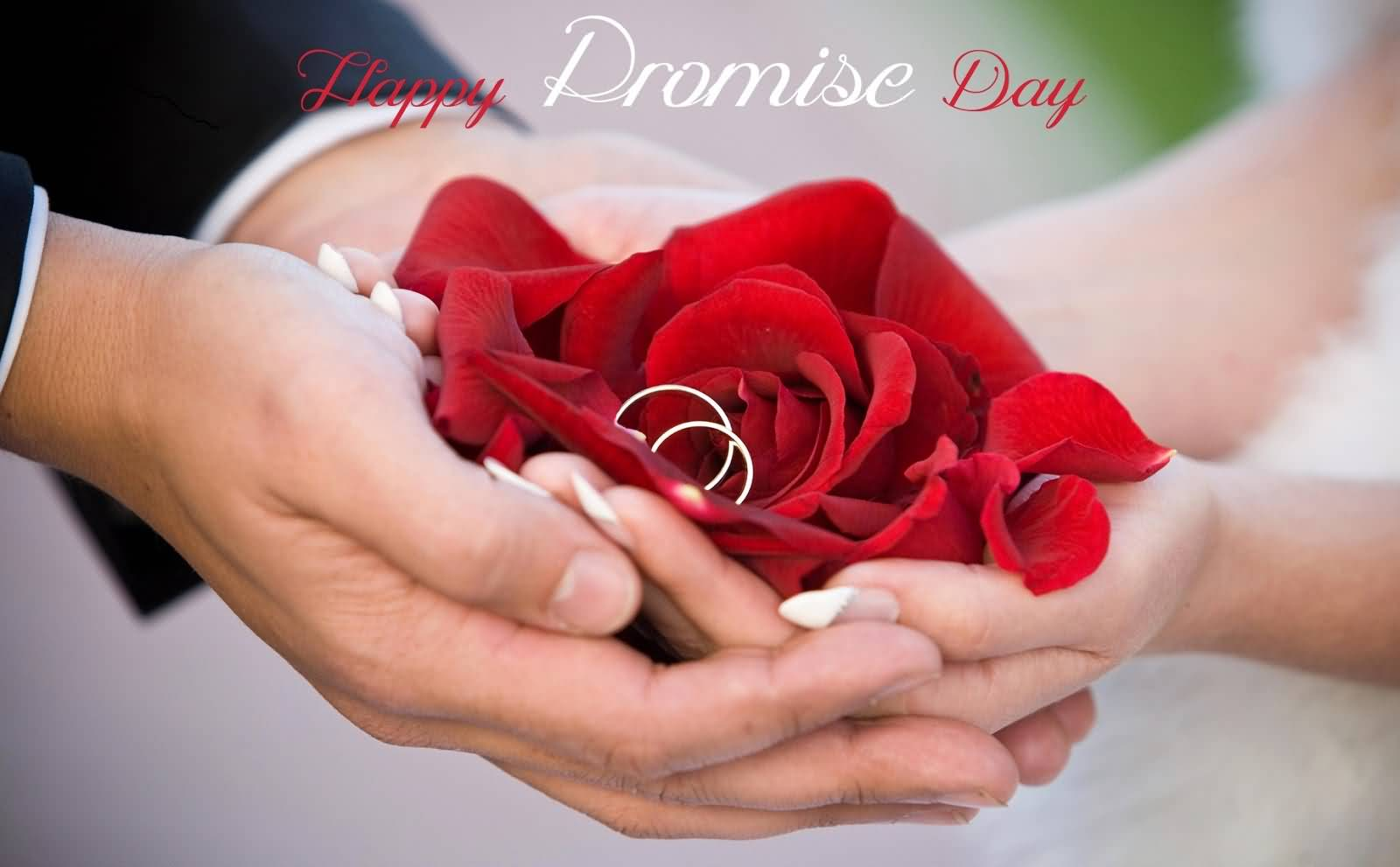 Happy Promise Day Rose Flower And Rings In Hand