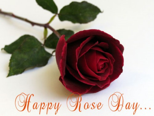50 most beautiful happy rose day wish pictures happy rose day 2017 wishes m4hsunfo