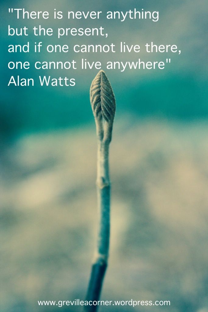 There is never anything but the present, and if one cannot live there, one cannot live anywhere. Alan Watts