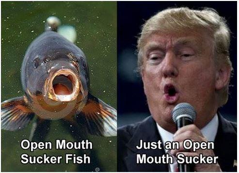 Trump Fish