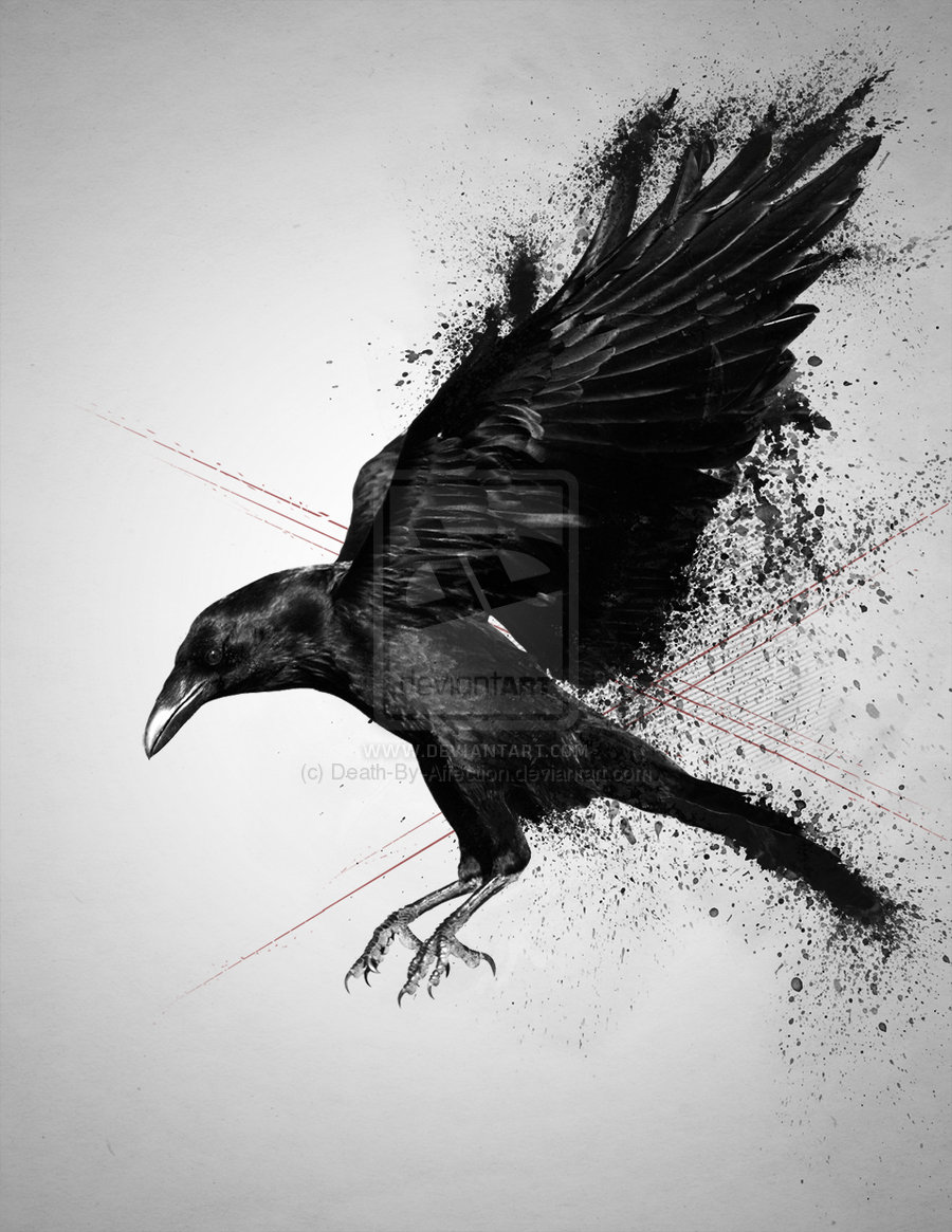 Evil crow wallpaper - photo#44
