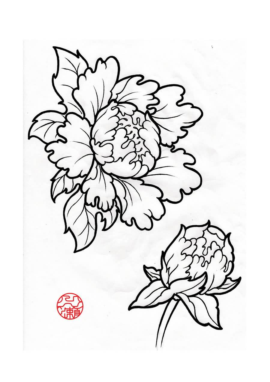 Flower Outline Drawing : Amazing peony outline tattoos