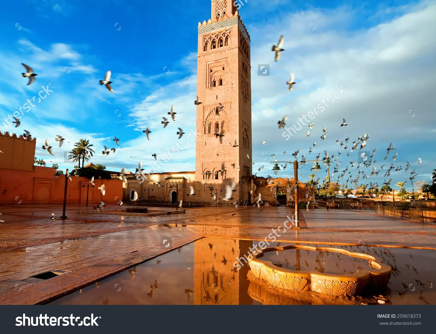 koutoubia mosque courtyard. Black Bedroom Furniture Sets. Home Design Ideas