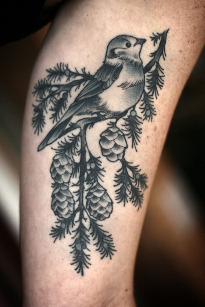 Black And Grey Bird On Pine Branch Tattoo On Half Sleeve