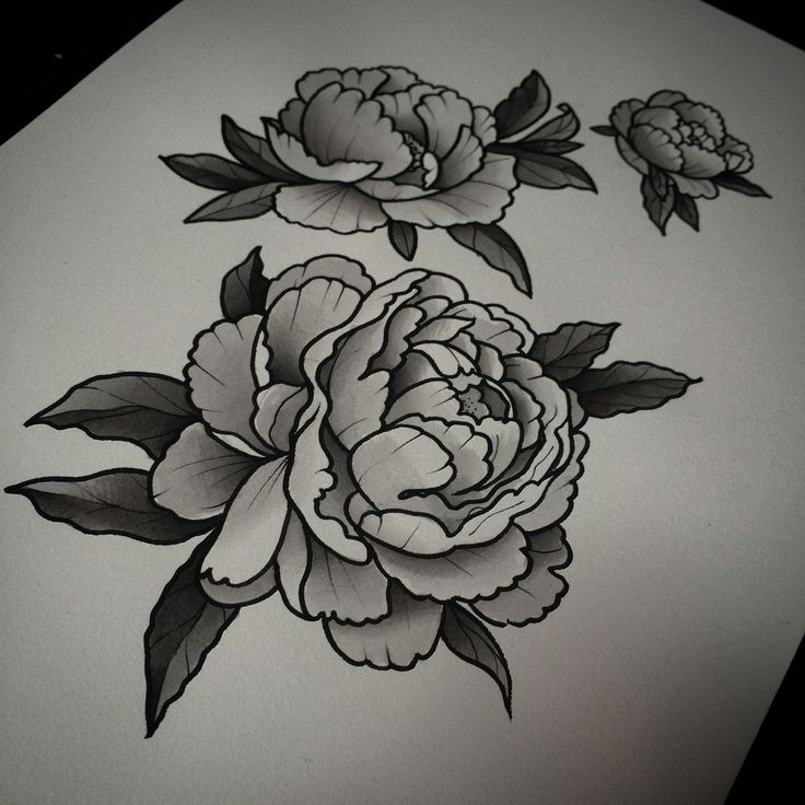 Black And White Peony Flowers Tattoo Design