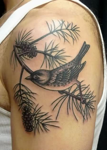 Black Ink Bird On Pine Cone Branch Tattoo On Man Left Shoulder