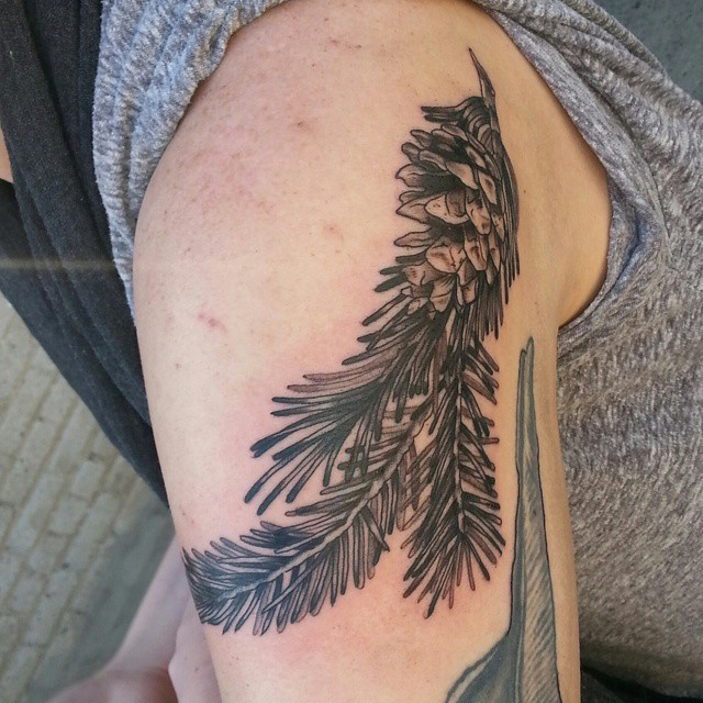50 pine cone tattoos design and ideas for Pine tree tattoo ideas