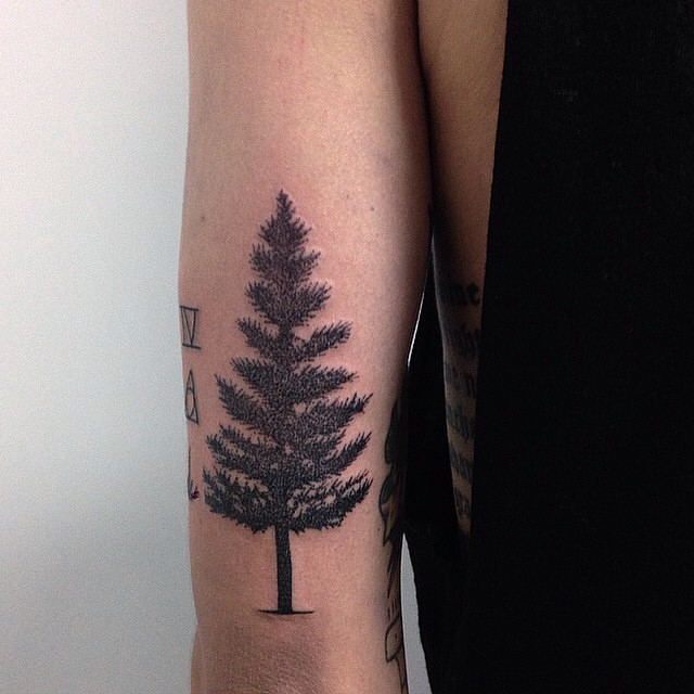 47 best pine tree tattoos design and ideas for Tree tattoo on forearm