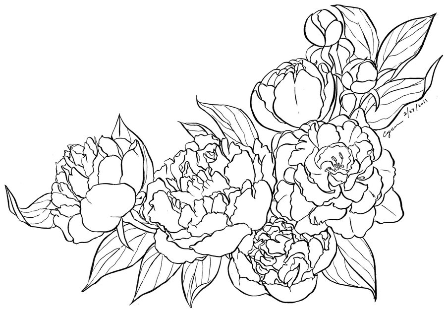 Colour Line Art Design : Amazing peony outline tattoos