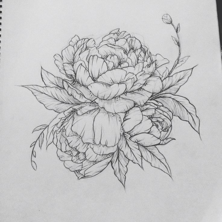 Classic Black And White Peony Flower Tattoo Design