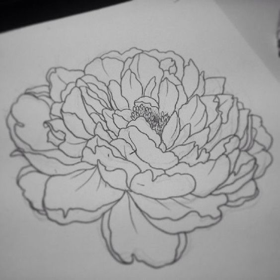 Classic Outline Peony Flower Tattoo Design