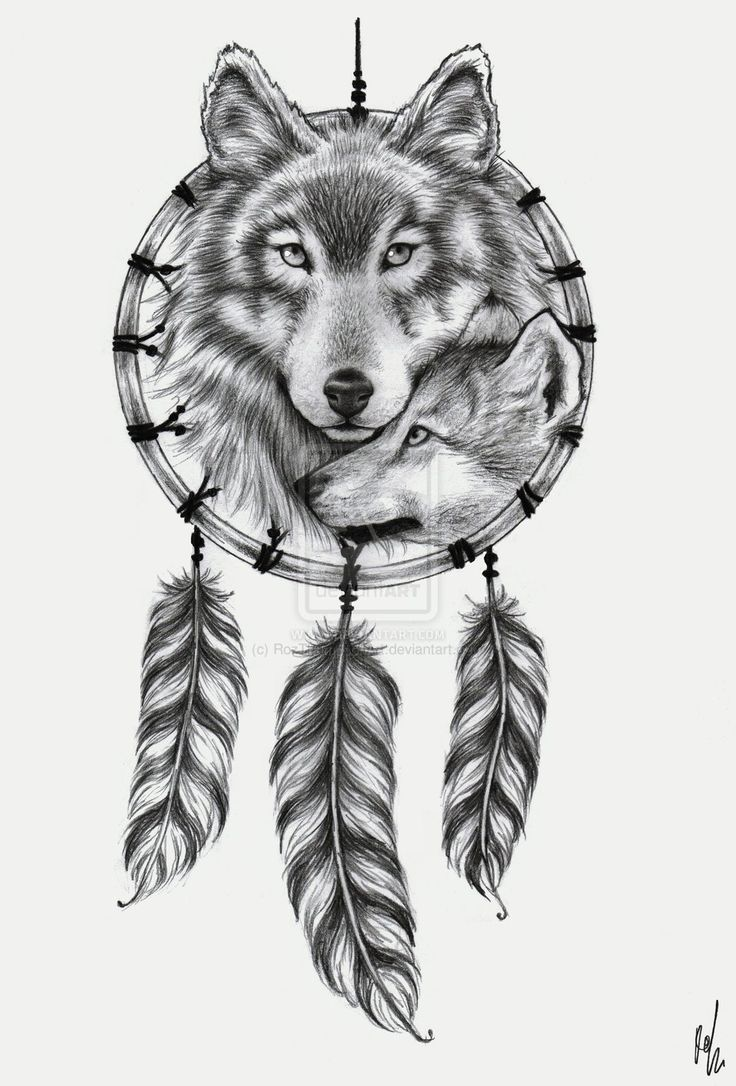 dreamcatcher wolf tattoo design. Black Bedroom Furniture Sets. Home Design Ideas