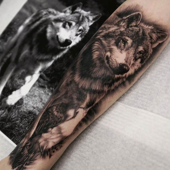 ff0e0c6cb5ee4 Grey And Black Wolf Tattoo On Forearm