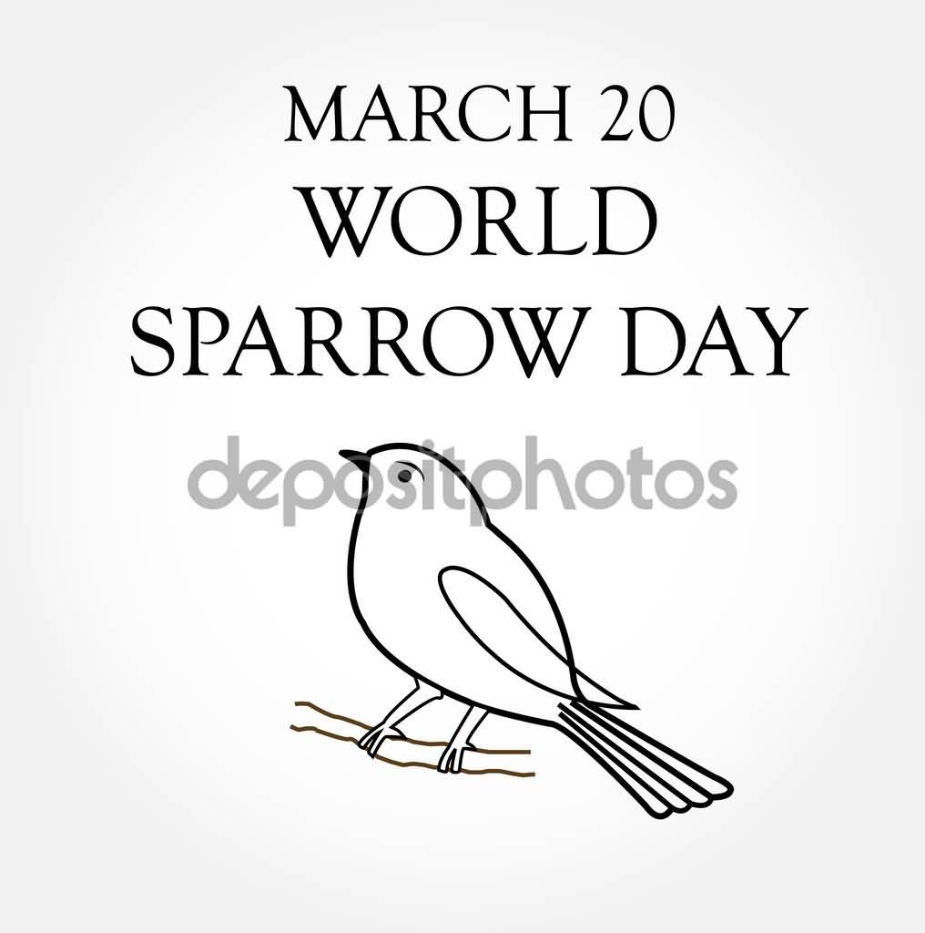 march 20 world sparrow day coloring page
