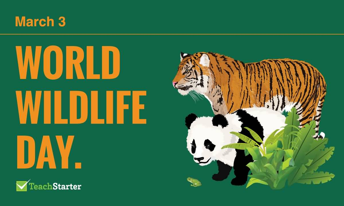 March 3 World Wildlife Day Picture