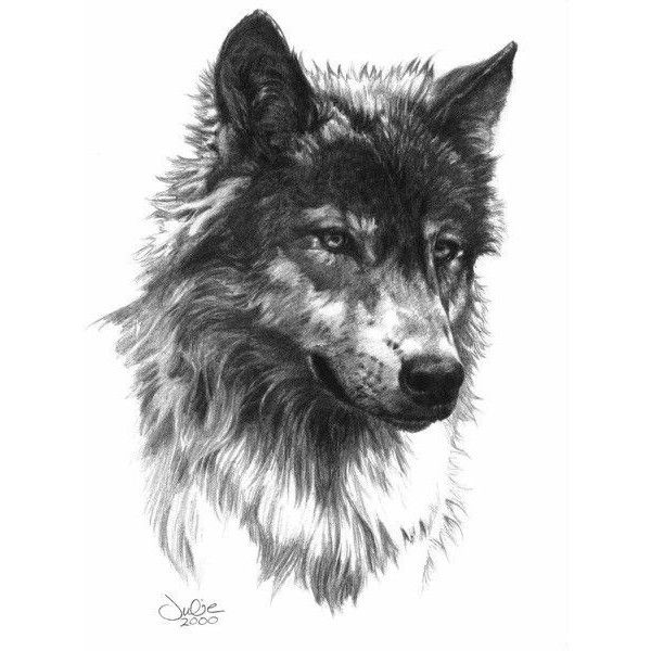 14cd9b0e8b472 Nice Wolf Head Tattoo Design Idea