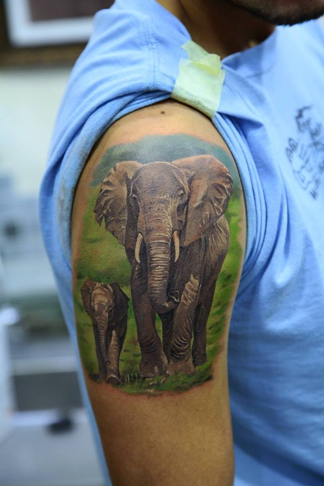 Realistic Elephant With Baby Elephant Tattoo On Right Shoulder