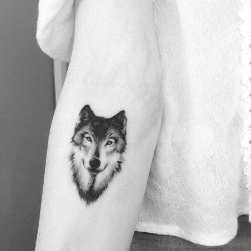 f503ae500 57+ Best Wolf Tattoos Pictures And Ideas