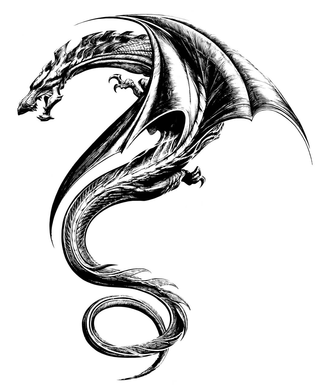 55+ Best Dragon Tattoos Designs Collection
