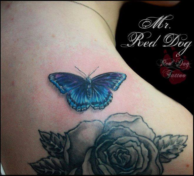 c3021e602007d Wonderful Butterfly With Rose Tattoo On Right Back Shoulder