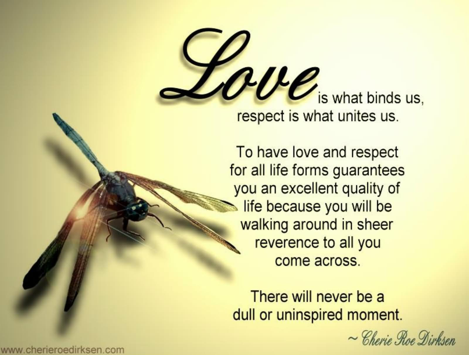 Love Respect Quotes Love Is What Binds Us Respect Is What Unites Usto Have Love And
