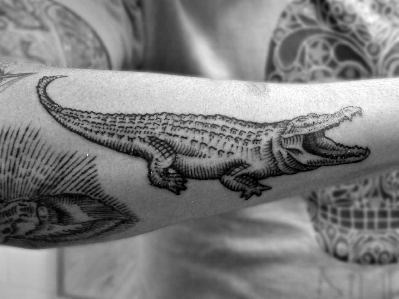 581a23e66 53+ Best Alligator Tattoos Design And Ideas