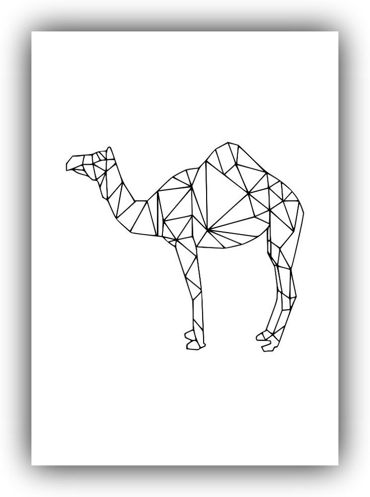 50+ Best Camel Tattoos Design And Ideas
