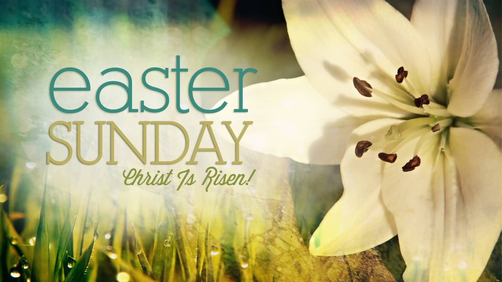 easter sunday The movements of the sun and moon determine the date of easter sunday, christianity's holiest celebration.