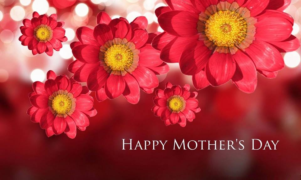 Happy Mothers Day Flowers Image