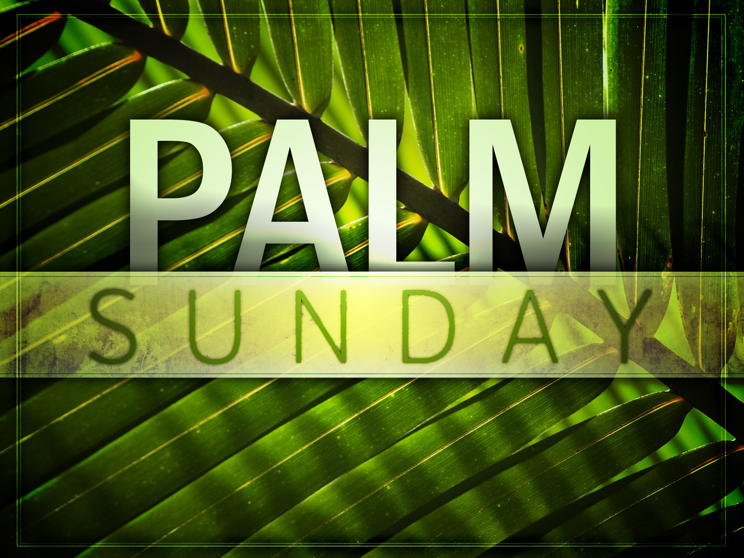 palm sunday 2017 - photo #4