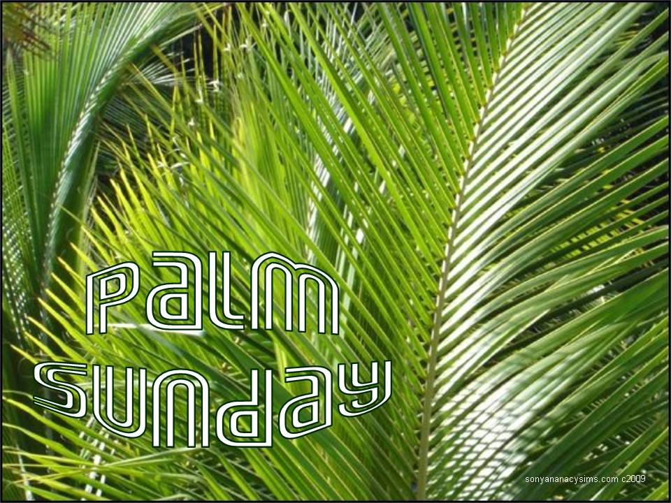palm sunday 2017 - photo #31
