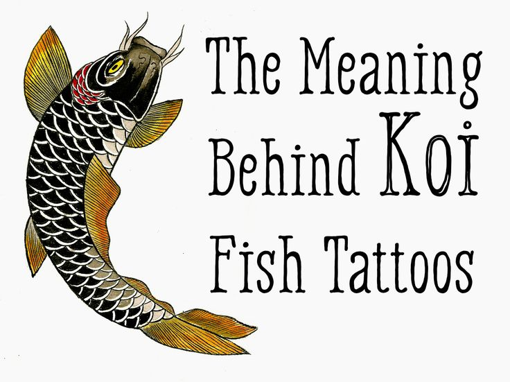 Traditional koi fish tattoo design for Koi fish quotes