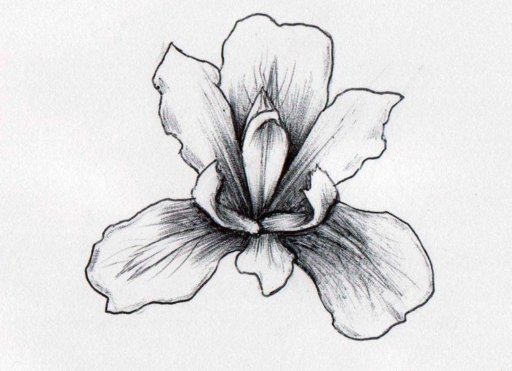 0d036f114e6ec 36+ Best Iris Tattoos Design And Ideas