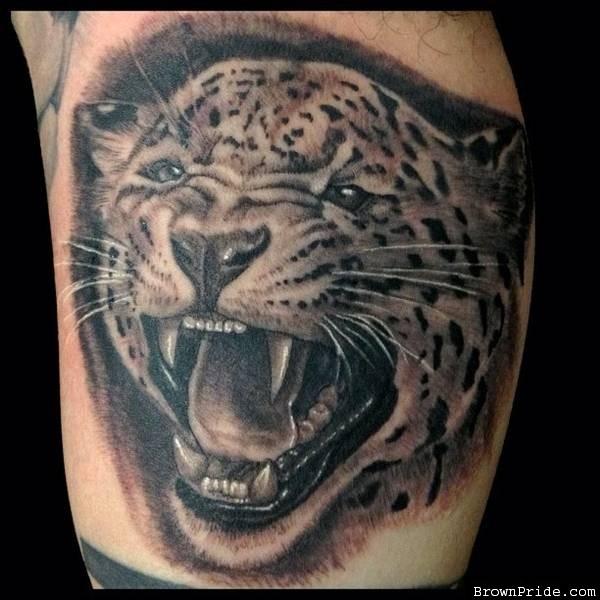 Black Ink Roaring Jaguar Head Tattoo On Leg Calf