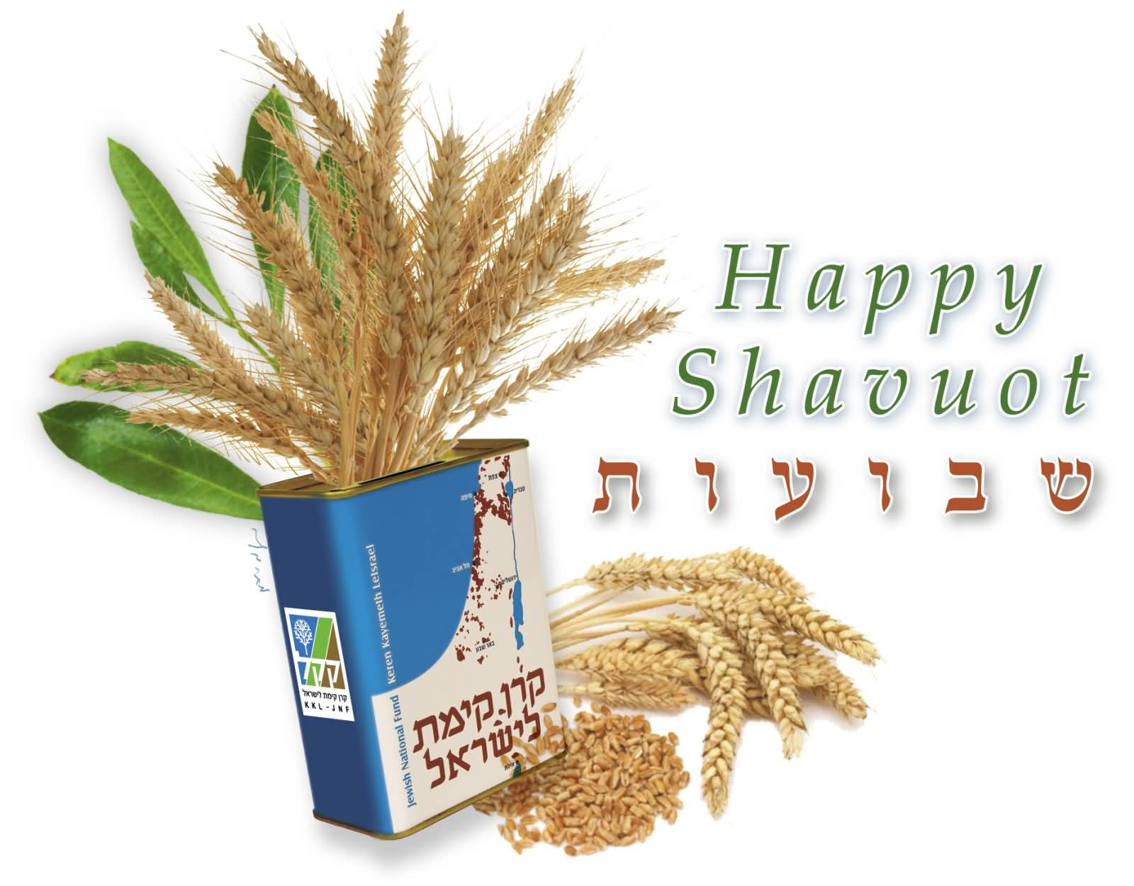 Happy Shavuot Bundle Of Wheat In Box