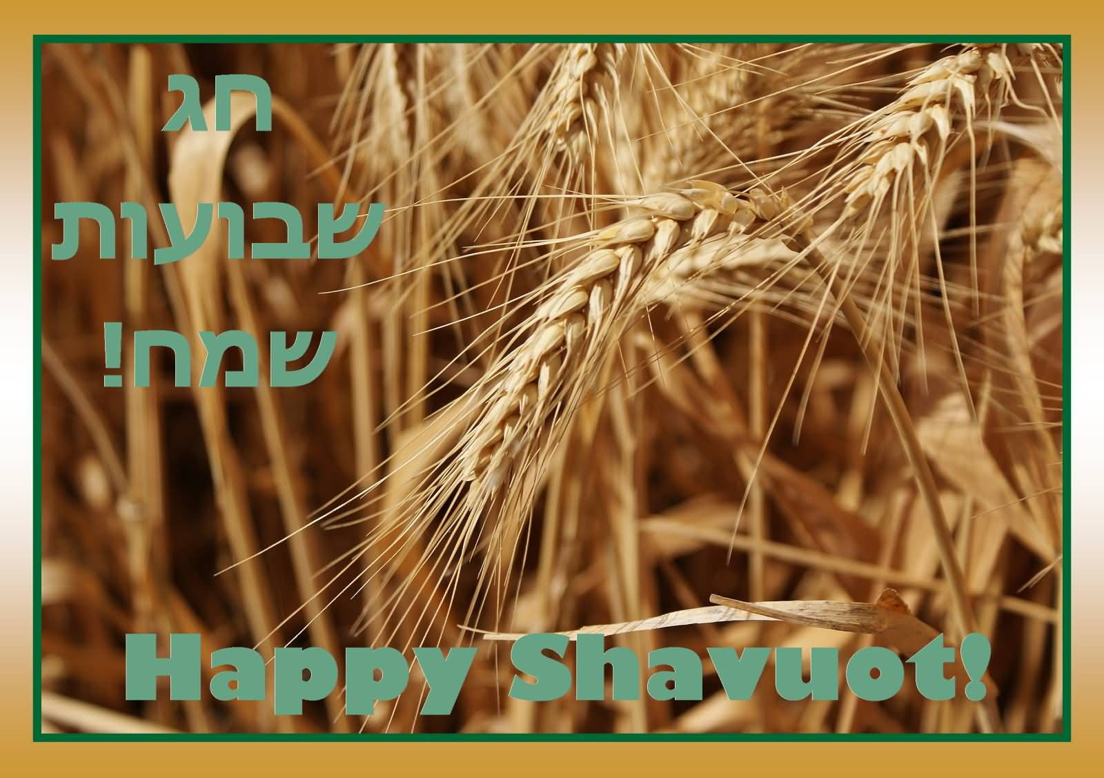 Happy Shavuot Wishes In Hebrew Text