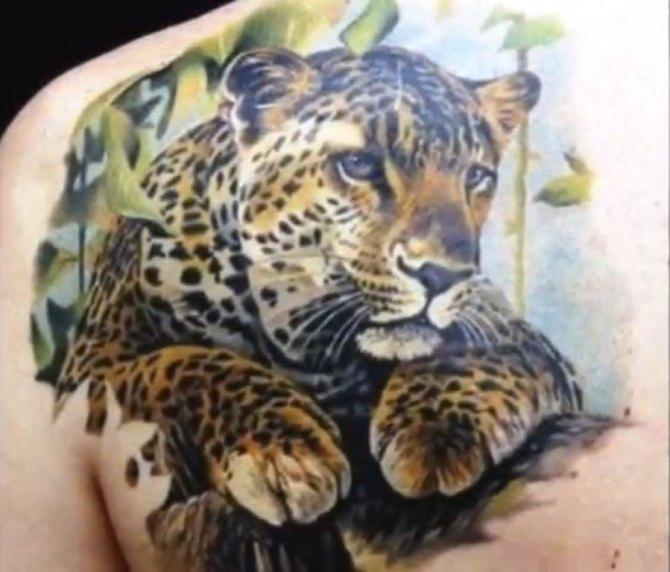 Realistic Jaguar Tattoo On Left Back Shoulder